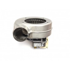 Вентилятор  Ferroli  F39846780